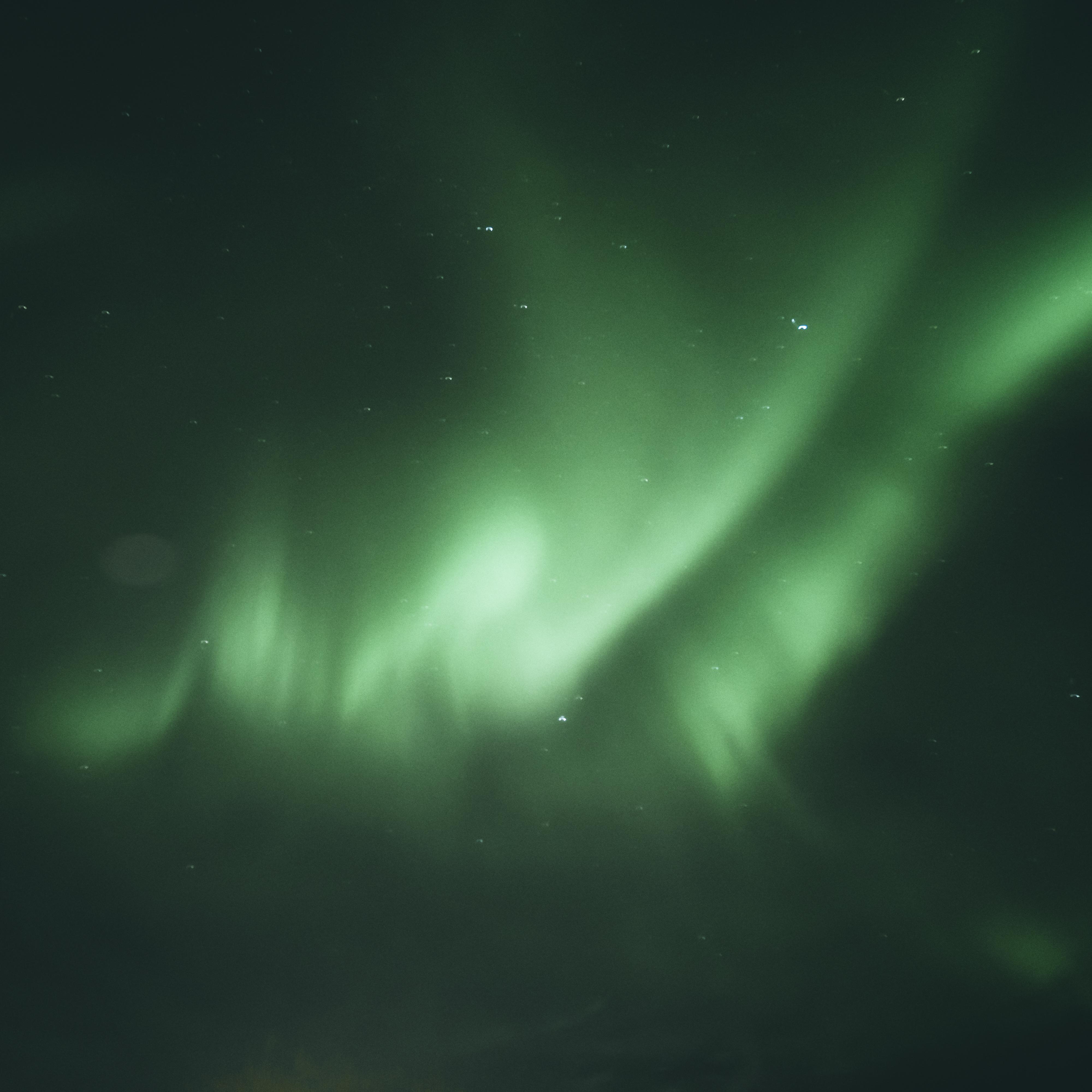 Polarlichter Island Reykjavik
